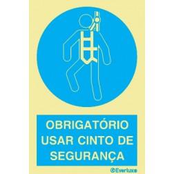 OBRIGATÓRIO USAR CINTO DE SEGURANÇA