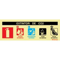 AGENTE EXTINTOR CO2